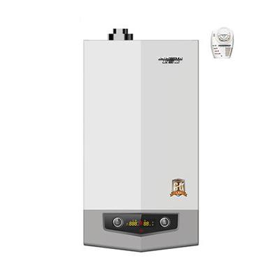 A.O.史密斯 主动防护型燃气采暖壁挂炉 地暖锅炉 L1PB20-C