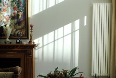 壁挂式暖气装修图