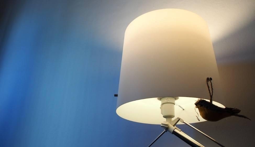 飞利浦智能灯泡多少钱—飞利浦智能灯泡多少钱
