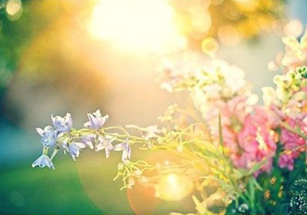 选择对了,每一天都是春暖花开~