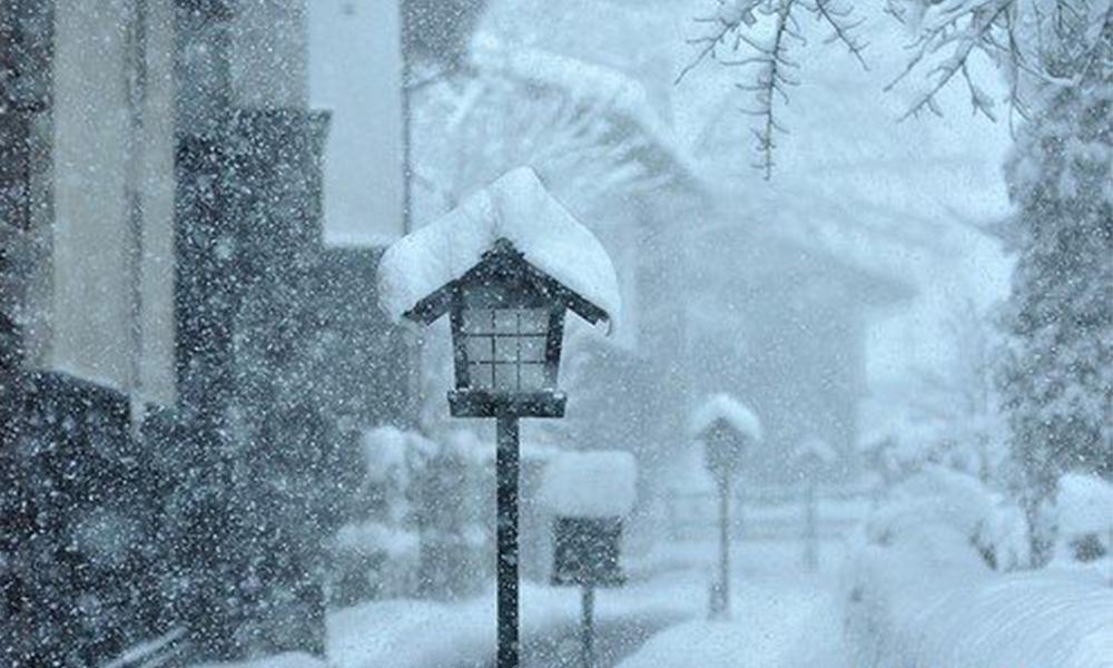 凛冬将至,真正的抗寒利器原来是他!
