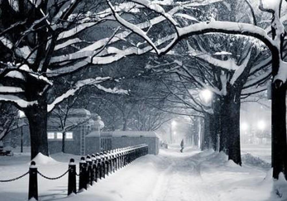 """大雪已至,2018年初的关键词是""""保暖"""""""
