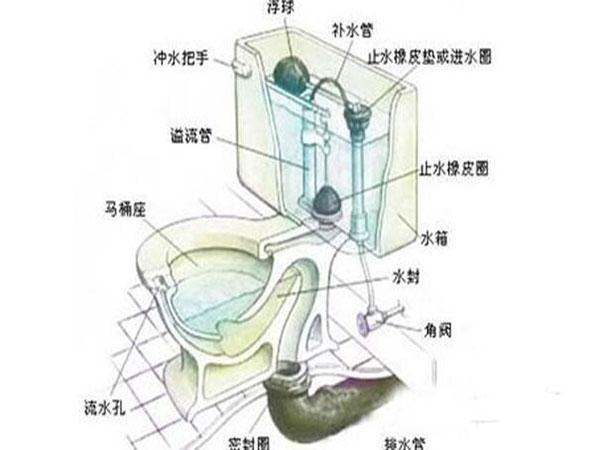 抽水马桶结构及工作原理—抽水马桶下水慢怎么办
