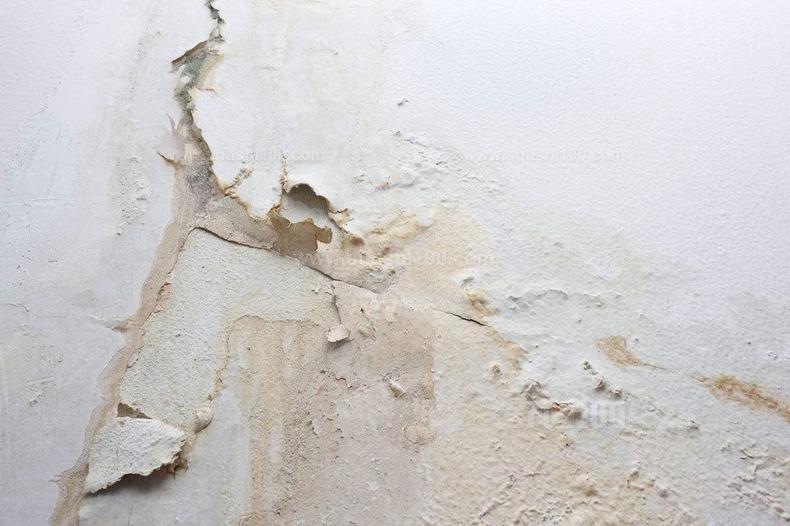 牆面潮濕髮黴怎麼辦