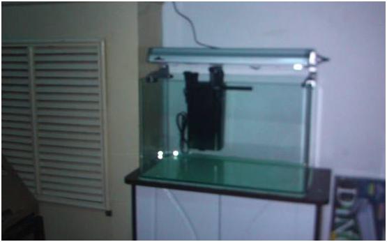 鱼缸过滤器是鱼缸中的重要组成部分,可以保持水体清澈,氧气充足,为