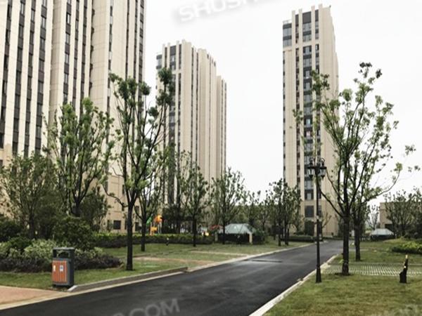 宁波·黄山绿苑|节能环保就选舒适100