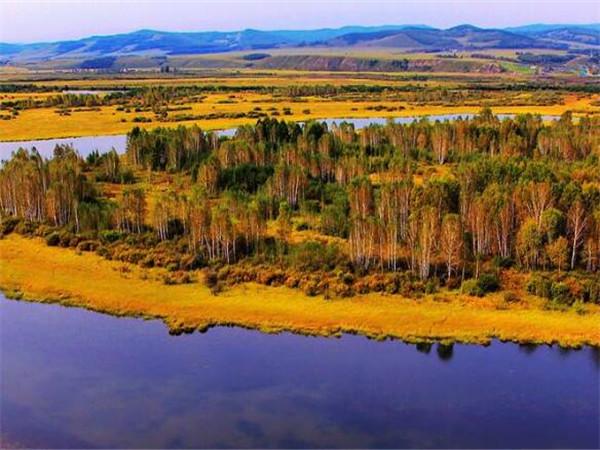 大兴安岭是在黑龙江省,有着非常茂密的原始森林图片