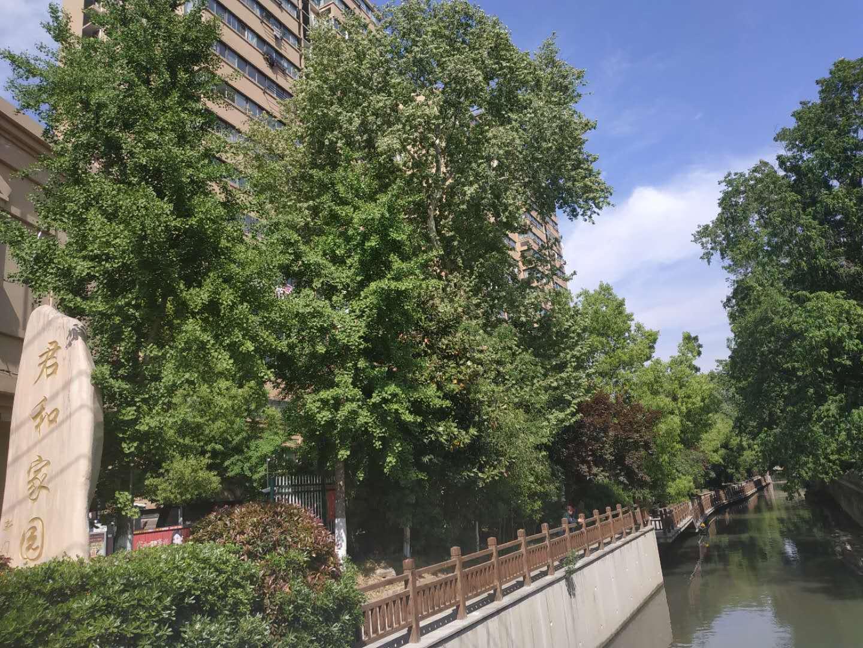 南京·君和家园|中央空调+明装暖气片+中央新风  三系统全方位体验舒适生活