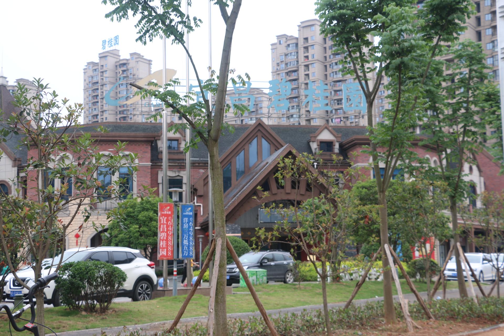 宜昌·碧桂园丨地暖,让您的家享受品质舒适生活!