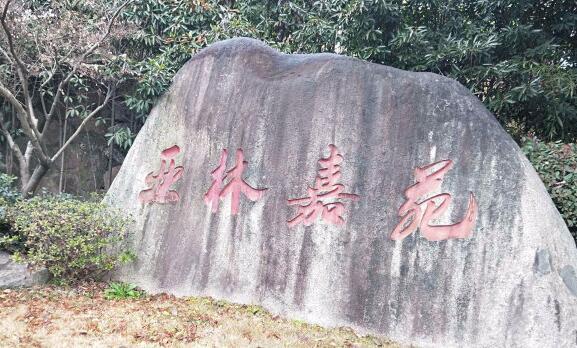 杭州·亞林嘉苑|明裝暖氣片,幫你趕走冬天嚴寒!