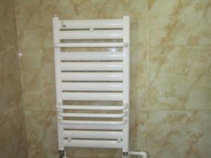 卫生间明装卫浴暖气片装修效果图 武汉暖气片工程案例 尚隆地球