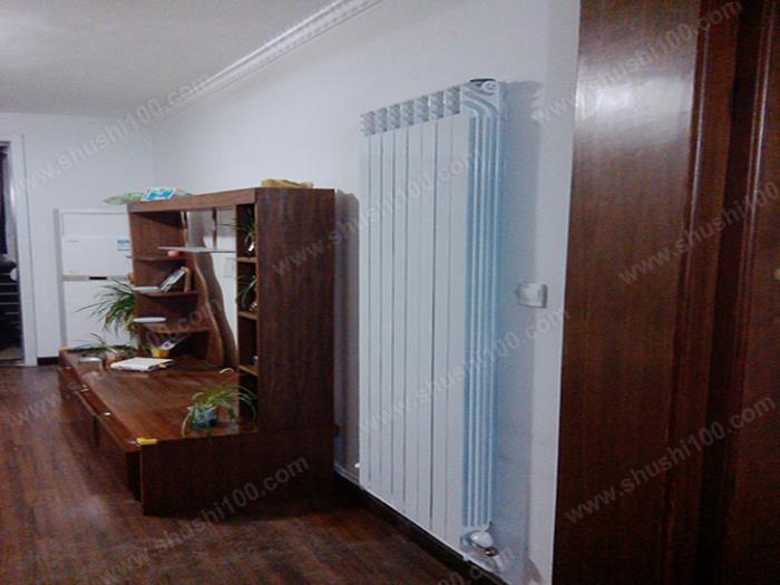 暖气片安装效果图 暖气片打造暖意客厅 (2/6)