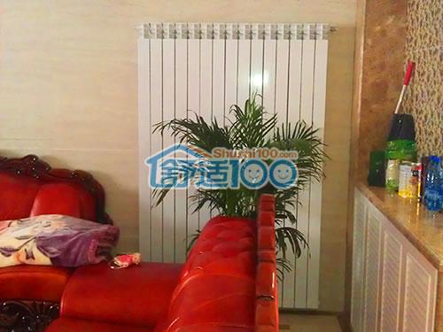 客厅暖气片装修效果图