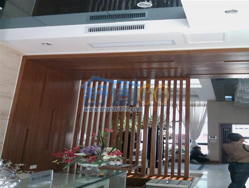 玉龙岛别墅客厅空调风口效果图