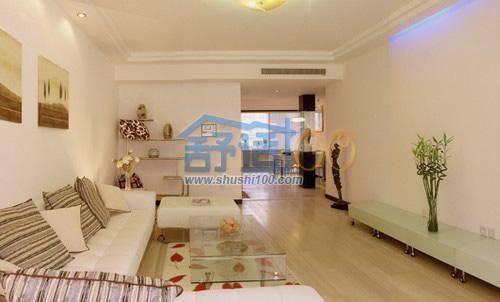 客厅中央空调时尚设计-尽显现代家居美观大气