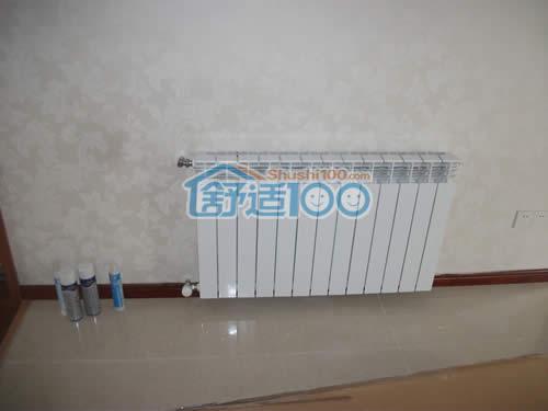 客厅暖气片安装