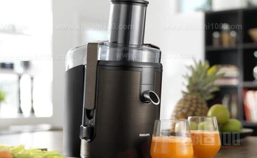 十大榨汁机品牌—十大榨汁机品牌排行
