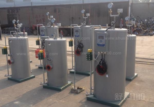 小型燃气蒸汽锅炉 小型燃气蒸汽锅炉详细介绍