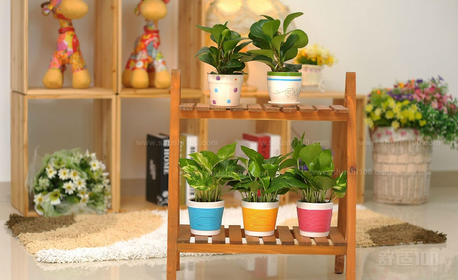 室内木制花架 室内木制花架的几种类型