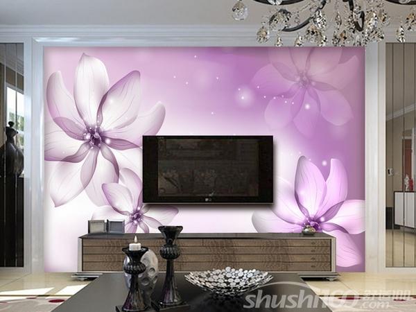 客厅电视墙贴画 客厅电视墙贴画的风水介绍