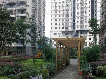 武汉·外滩棕榈泉|想要好的生活环境,舒适100是不错的选择